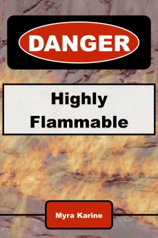 flammable book cover